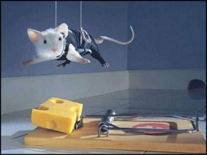 Extreme Mouse